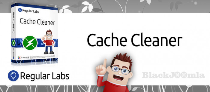 Cache Cleaner 6.5.0
