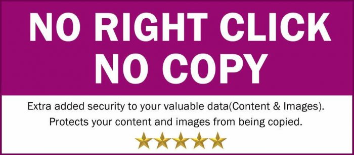 No Right Click No Copy 2.0.0